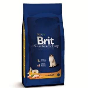 brit-pro-kotata